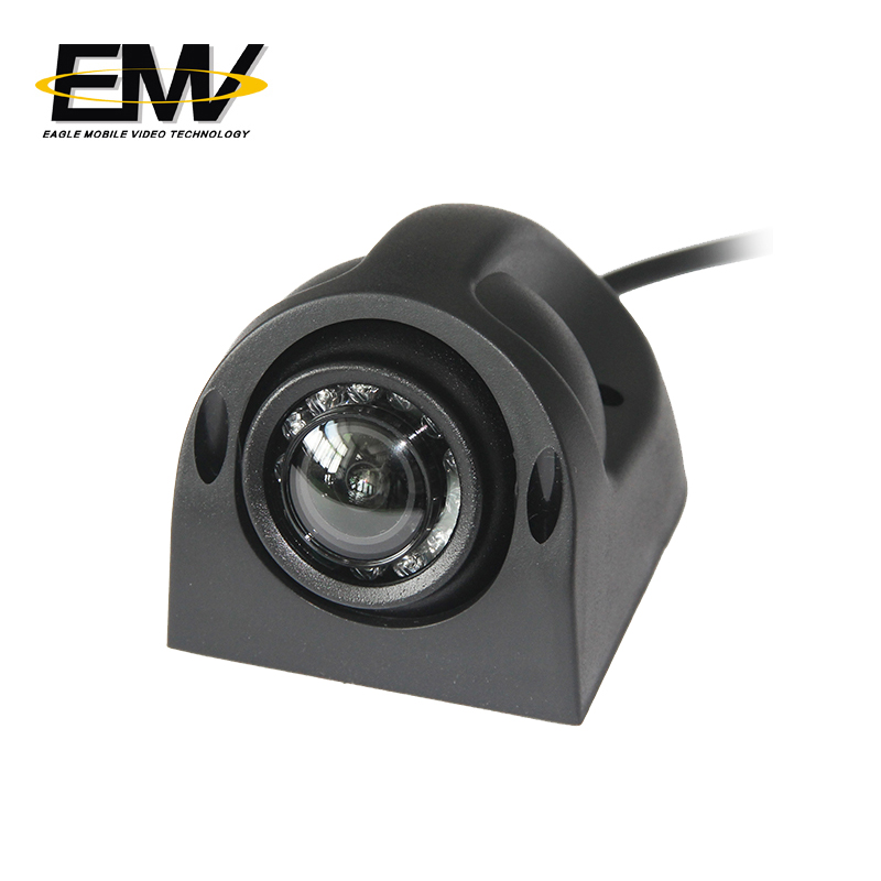 Eagle Mobile Video vision vandalproof dome camera effectively for ship-1